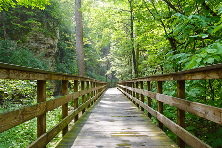A wooden pathway leading through the woods to Hayden Falls in Columbus, Ohio