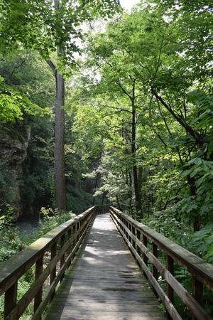 hayden: Hayden Falls Pathway