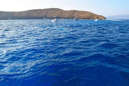 Molokini Reef