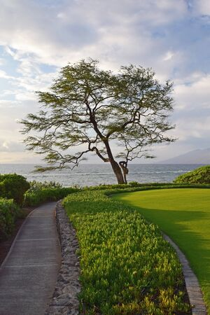 Maui Pathway