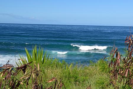 maui: North Shore Maui