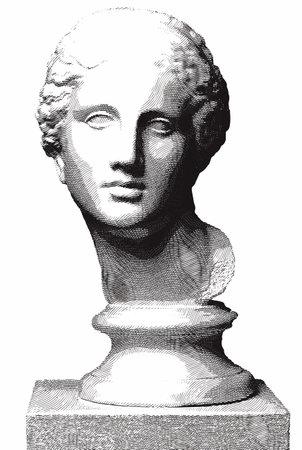 젊은 여성의 새겨진 그림의 머리.