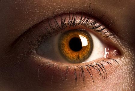 오렌지 눈동자와 인간의 눈의 근접 촬영입니다.