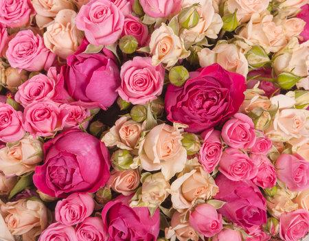 wedding bouquet with rose bush, Ranunculus asiaticus as a background Foto de archivo