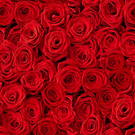 Un montón de rosas rojas naturales de fondo sin fisuras Foto de archivo - 45012793