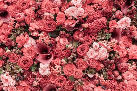 Resumen de antecedentes de flores Primer plano. Foto de archivo - 48353426