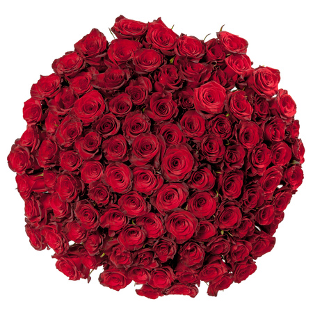 Beautiful red roses bouquet  isolated on white. Stock Photo