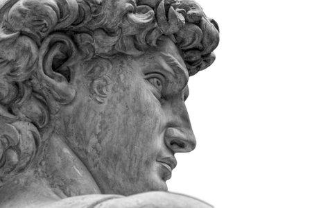 ミケランジェロの有名な像の頭 - フィレンツェのダビデ、白で隔離