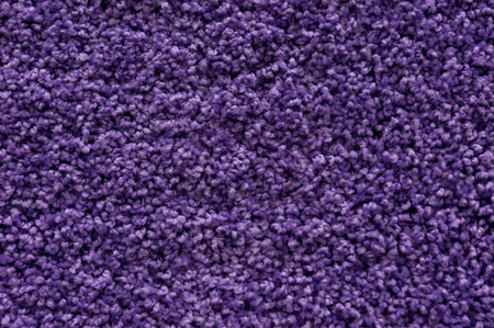 Ultra violet or purple carpet texture backdrop. Warm wool colored cloth with sheep curled nap