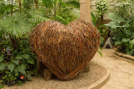 Heart shape decoration in orangery. Exotic plant collection. Winter garden. Moscow State University botanical garden Aptekarskiy Ogorod Moscow 版權商用圖片