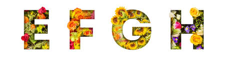 Floral letters. The letters E, F, G, H are made from colorful flower photos. A collection of wonderful flora letters for unique spring decorations and various creation ideas 版權商用圖片