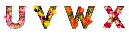 Floral letters. The letters U, V, W, X are made from colorful flower photos. A collection of wonderful flora letters for unique spring decorations and various creation ideas 版權商用圖片