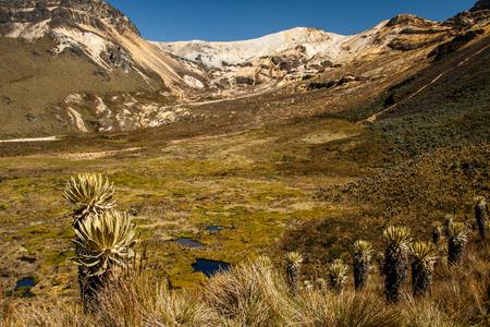 nevado: The volcano of Nevado del Quindio in Los Nevados Andes, Colombia Stock Photo
