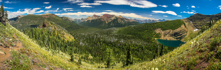 Panoramatic view of the fresh green glaciar Wall Lake valley, Waterton Lakes NP, Canada Reklamní fotografie