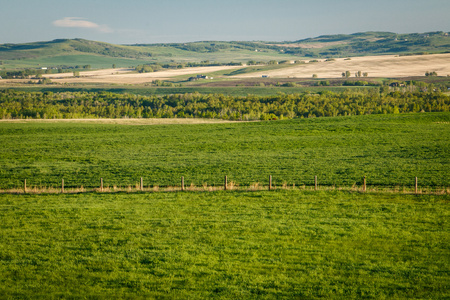 Fresh green countryside of Southern Alberta, province of Canada, beatiful morning in canadian farmland, foothills of Canadian Rockies
