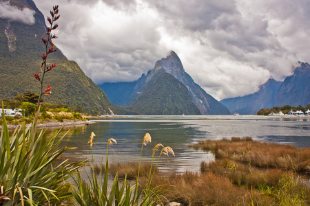 Famous view of Milford Sound from harbor of the fjord, New Zealand, Lonely planet best trek of New Zealand, world backpacking, dramatic scenery of zealandia landscape, tropical mountains of Australasia