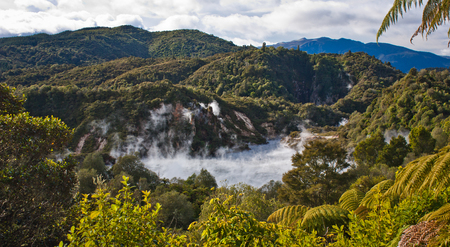Frying pan lake in Waimangu volcanic valley in New Zealand, Geotherml park in NZ, panoramatic view of volcanic activity, geothermal tourism, endemic zealandia plants, fern forest