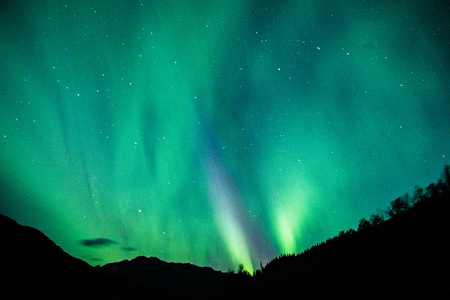 The Northern light above Alaska parks HWY Reklamní fotografie