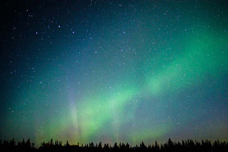 Magical Northern light in far away North of Alaska, US aurora adventure, dancing sky, lights on the sky Reklamní fotografie