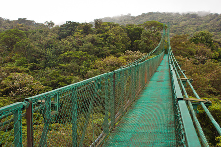 Hanging bridge in Monteverde reserve in Costarica, touristic destination number one in Central America, tourictic attraction above tropical rainforest