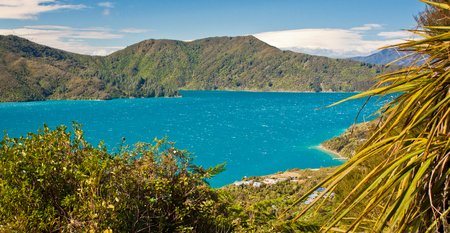 Blue waters of Cook Inlet between North and South Island of New Zealand, Queen Charlotte track in fern paradise of NZ Reklamní fotografie