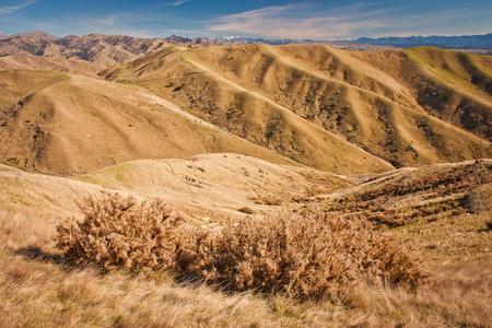 Steep dry grass hills around Blenheim in South Island of New Zealand, hiking around Blenheim in NZ Reklamní fotografie