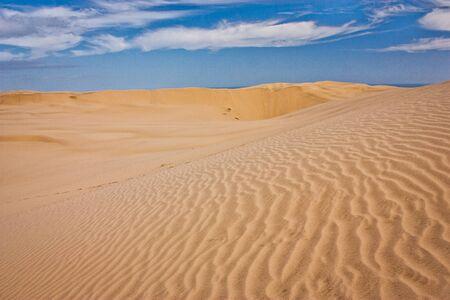 One of the Zelandian deserts in Northland in North Island, sandy dunes on desert