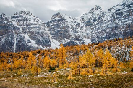 Magical colors of autumn season in Canadian rockies