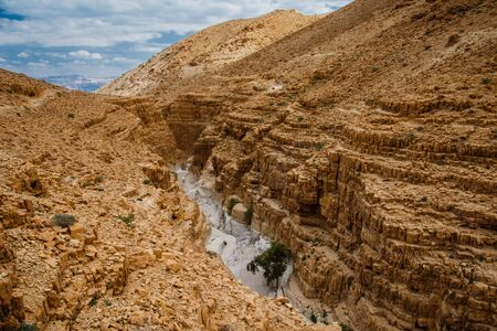 Deep dry canoyn in Ein Gedi natural reserve in Israel, interesting geological phenomenon near Dead sea, rocky dessert