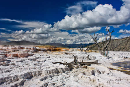 Beautiful geyser in Yellowstone national park in US, the most wonderful park of US, geothermal area in Wyoming 免版税图像