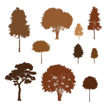 ash tree: Tree silhouettes
