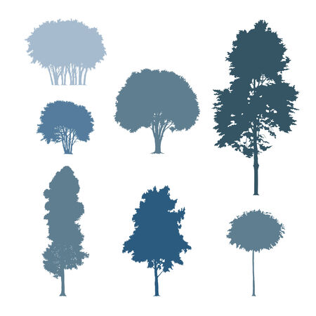Arbres silhouettes