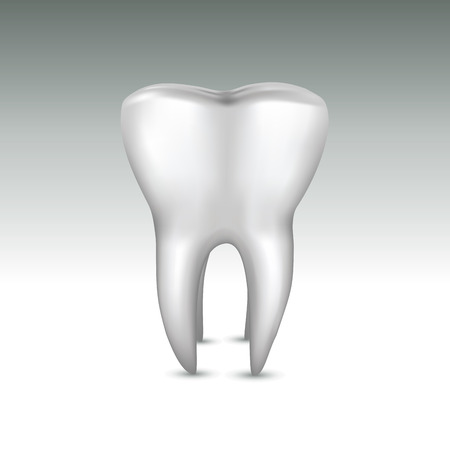 dental caries: Realistic illustration of a white tooth.
