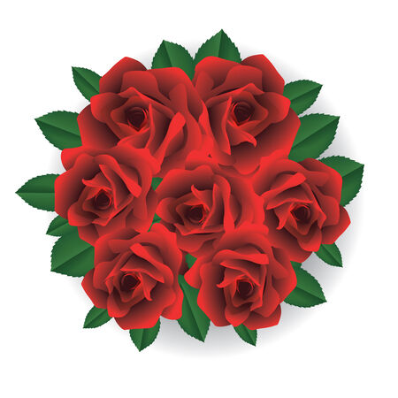 freshens: Bouquet of red roses. Vector illustration