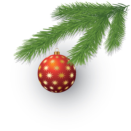 spruce tree: Christmas evergreen spruce tree and red glass ball. Vector illustration