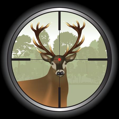 Rifle lens aiming a deer. Vector illustration Ilustração