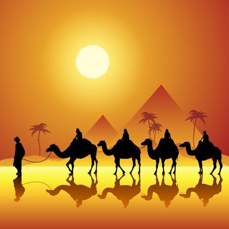 animales del desierto: Caravana con camellos en el desierto con las pirámides en el fondo. Ilustración vectorial