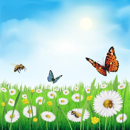 mariposa: Flores de primavera en un prado. Ilustración vectorial
