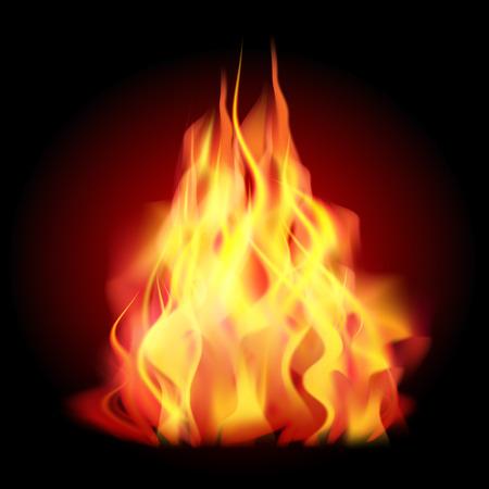 flames: Llamas de fuego como el fondo. Ilustración vectorial