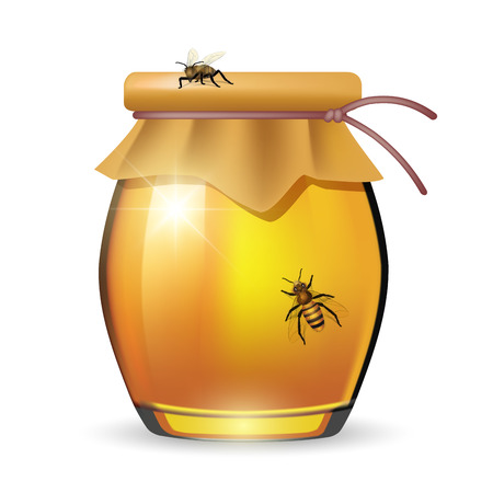 pot of gold: Honey in jar isolated on white background. Vector illustration