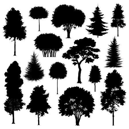 silueta: Conjunto de siluetas de árboles aislados en blanco. Ilustración vectorial