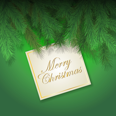 Christmas card with fir branch isolated on background. Vector illustration