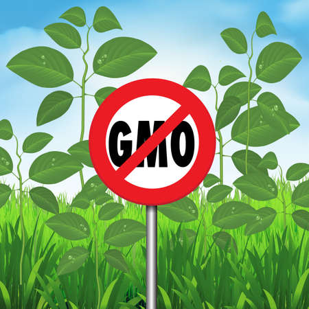 No GMO sign in front of a hybrid plants. Vector illustration