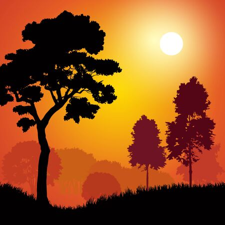 Silhouettes of trees at sunset. Vector illustration