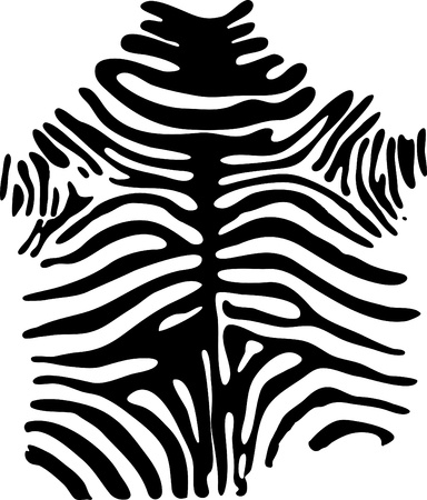 skin structure: Zebra pattern