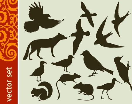 mouse animal: Design elements, animal shapes