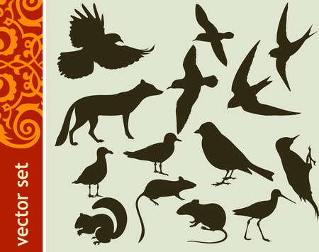Design elements, animal shapes Stock Vector - 25937713