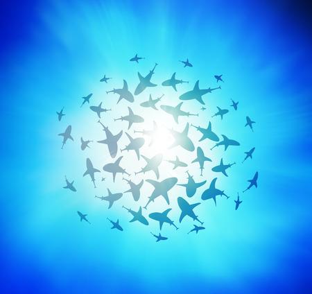circling: sharks circling from above