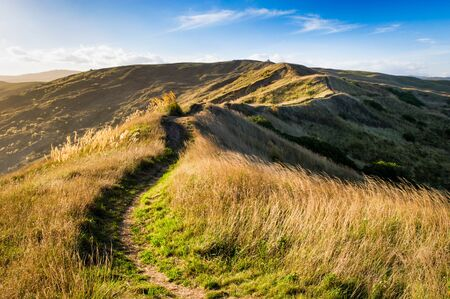 Hiking trail over hills of Castlepoint, Wairarapa, New Zealand