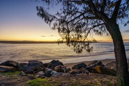 A tree overlooks the beach during sunset at Noosa, Sunshine Coast, Queensland, Australia